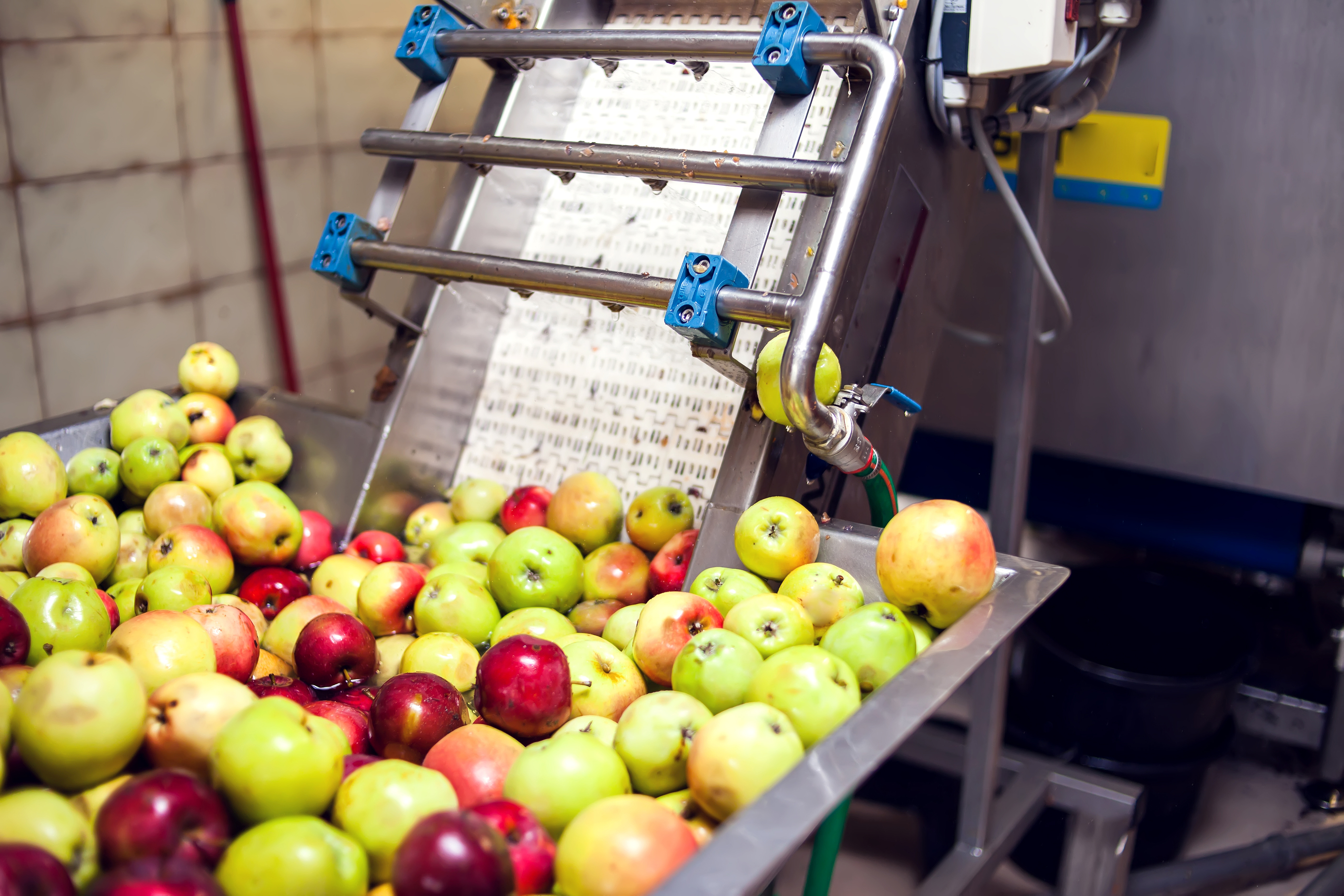 Processing-Of-Apples-For-Cider